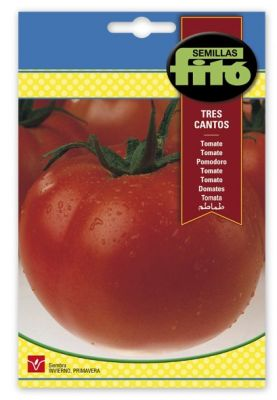 Tomate fito tres cantos